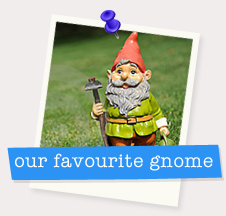Our Favourite Gnome